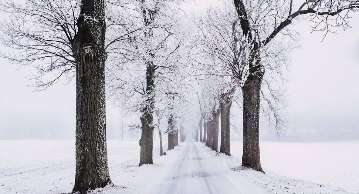Which City in Wisconsin Has the Best Weather?